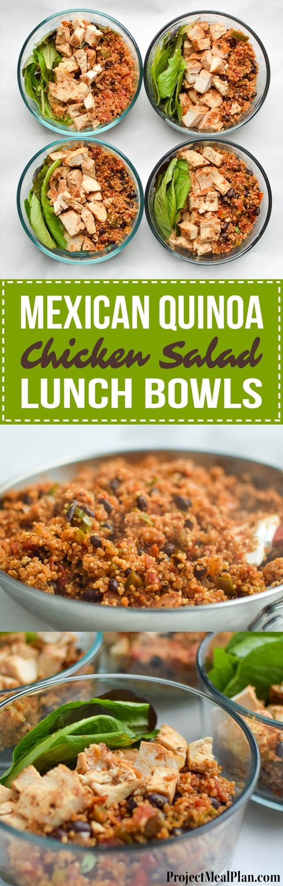 Mexican Quinoa Chicken Salad Lunch Bowls Mexican Quinoa Chicken Salad Lunch Bowls