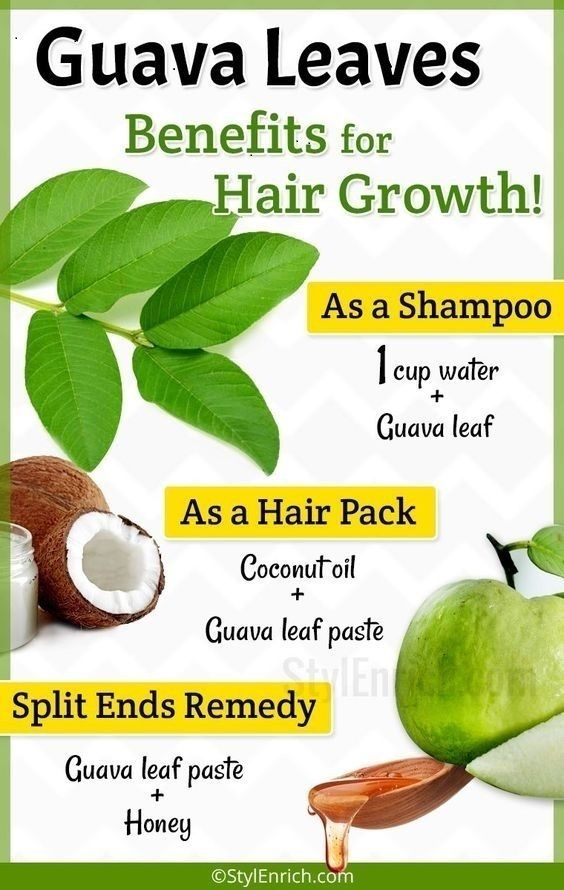 1 4 Guava Leaves for Hair Growth : How To Get Rid of Hair Fall Problems?